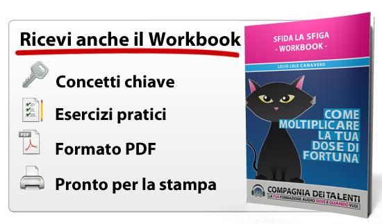 workbook-sls